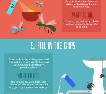 how to get rid of spiders outside your home