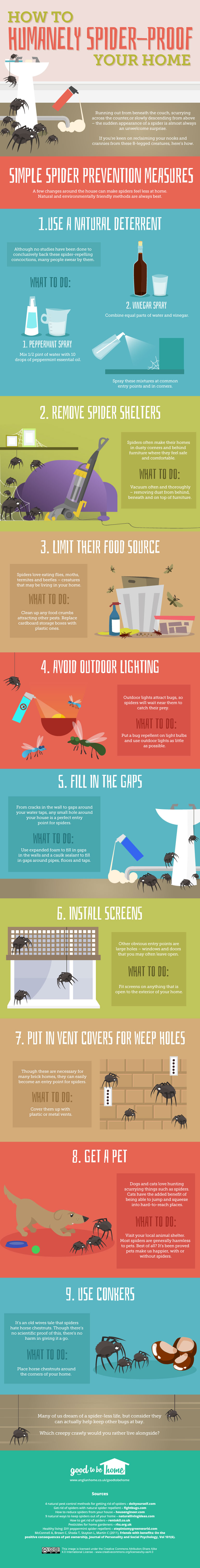 How to Get Rid of Spiders from Your Home Infograpic