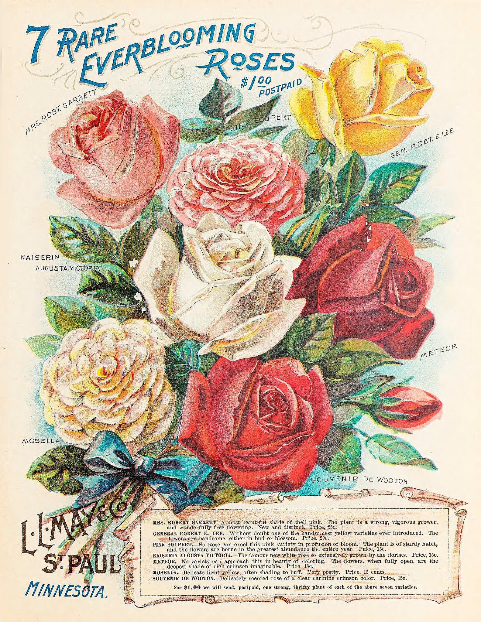 photograph relating to Free Vintage Printable called 25 Totally free Printable Common Floral Illustrations or photos Remodelaholic