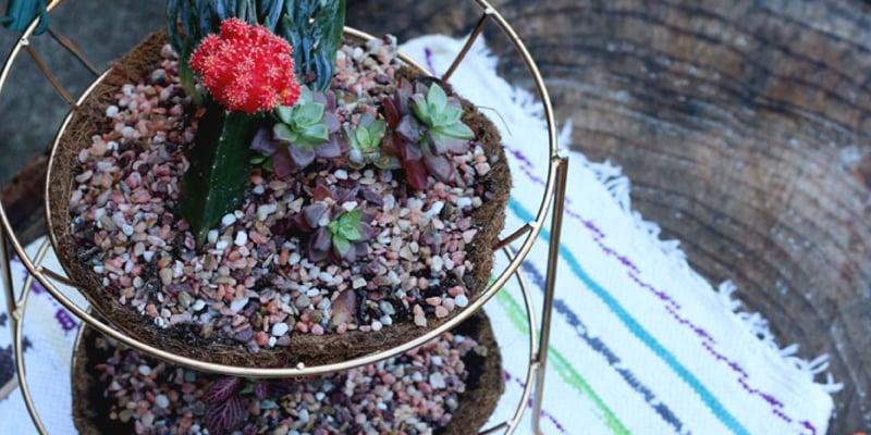 Upcycled Fruit Basket Centerpiece Planter