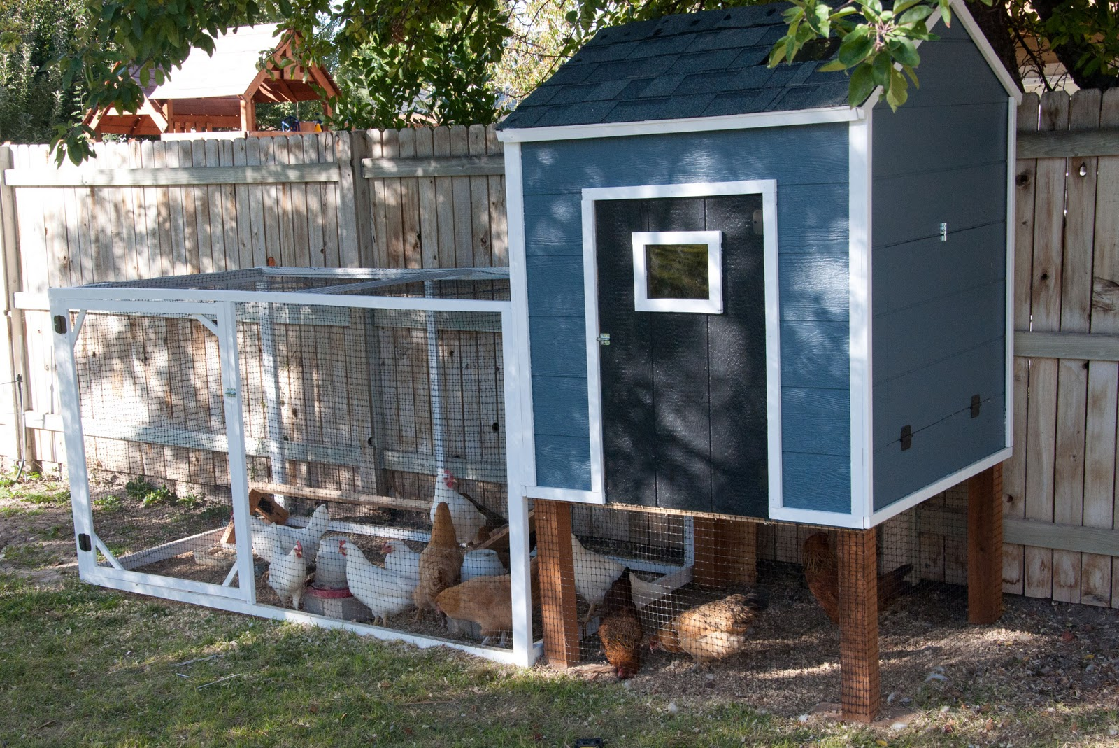 Remodelaholic cute diy chicken coop with attached for Plans for chicken coops