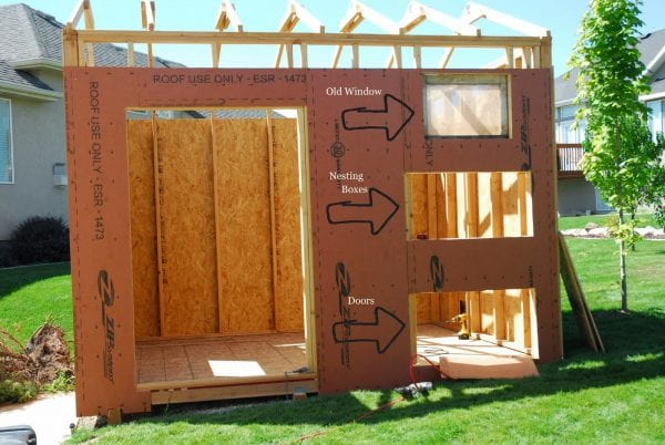 How to Build a Chicken Coop and Storage Shed by Chalkboardblue featured on Remodelaholic