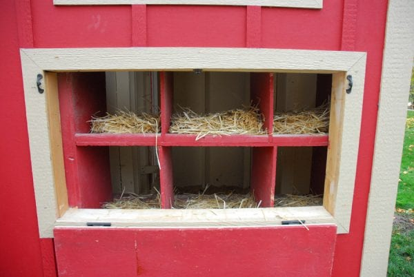 How to Build a Chicken Coop by Chalkboardblue featured on Remodelaholic