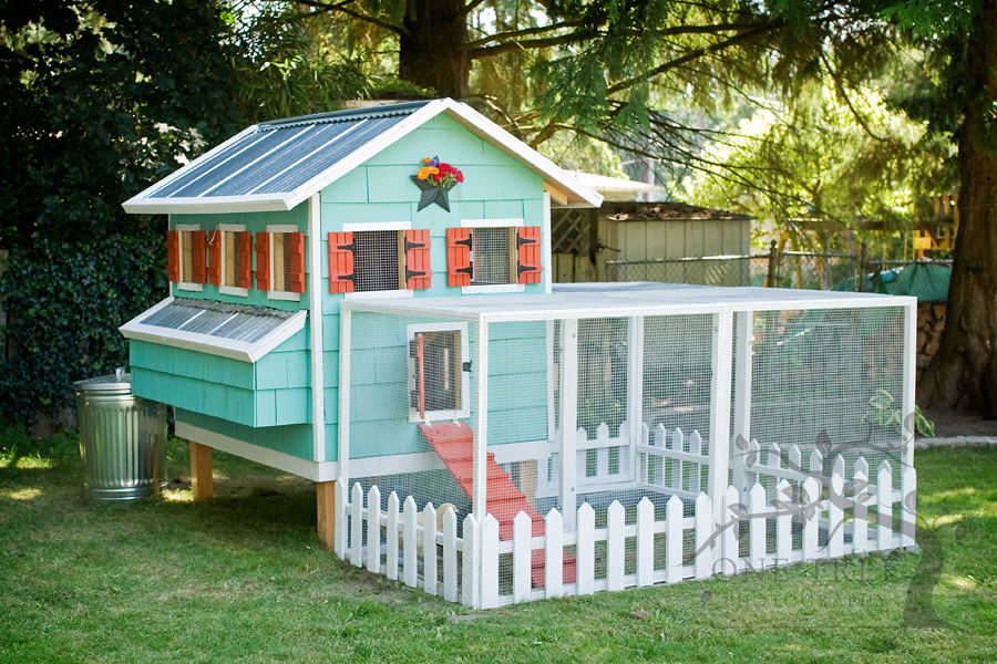 Remodelaholic Cute Diy Chicken Coop With Attached Storage Shed