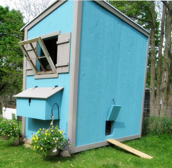 This is a great CUTE chicken coop!