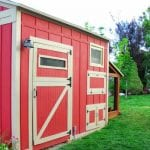 build a storage shed with attached chicken coop and run
