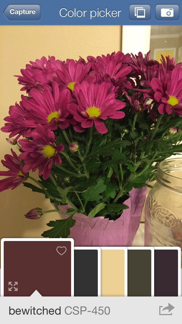 Benjamin Moore Color Capture - Free iPhone App to Choose Paint Colors from  a Photo @