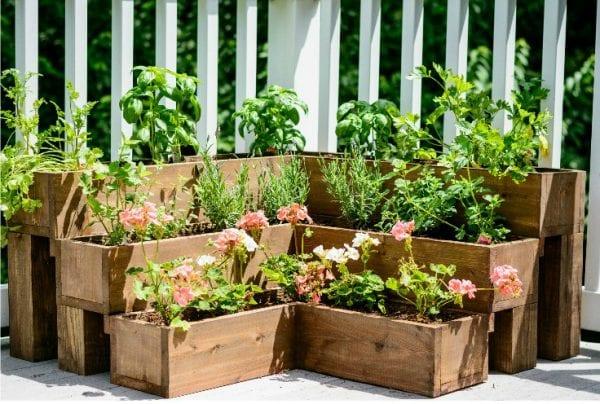 DIY+Tiered+Herb+Garden