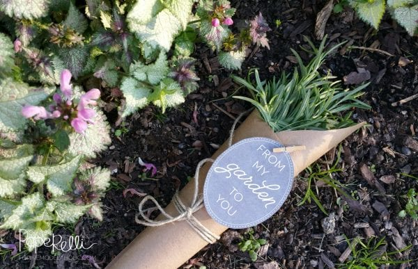 Printable Garden Gift Tags - share the bounty of your garden with these cute free printable gift tags!