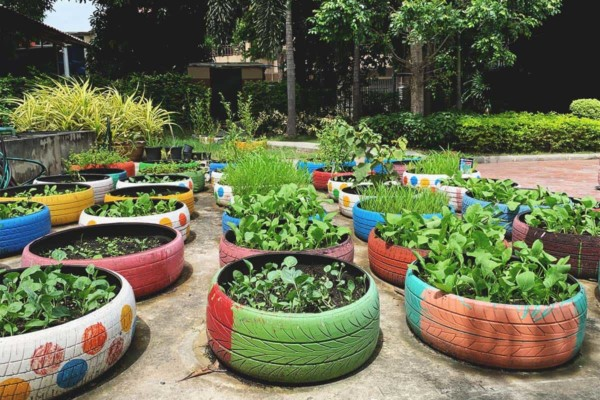 How To Start A Vegetable Garden Using Tires FI