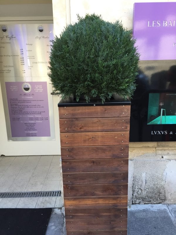 Build this tall wooden planter for $50 or less, inspired by a luxe French hotel! These would be great for the entry.
