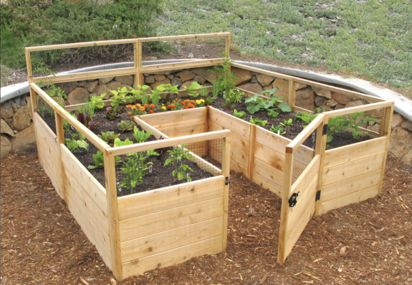 Raised Bed With Gate Earth Easy