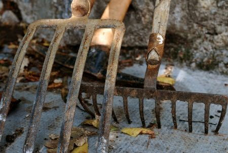 Fall Cleaning Projects: cleaning and oiling garden tools