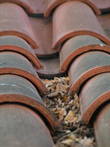 Fall Cleaning Projects: Gutters