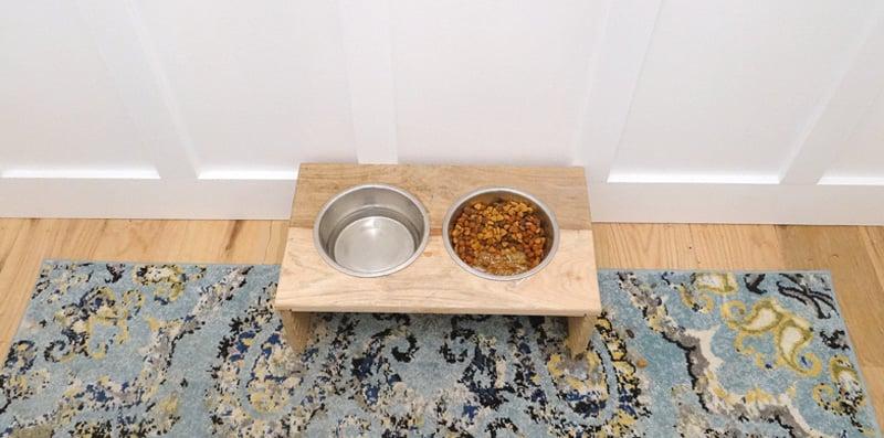 Featured Image DIY Pet Feeder
