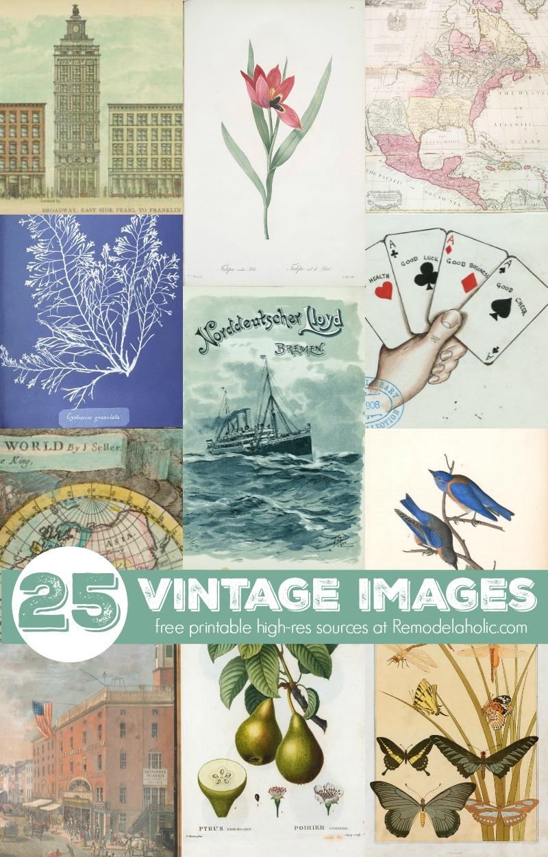 This is a photo of Crush Free Vintage Printables