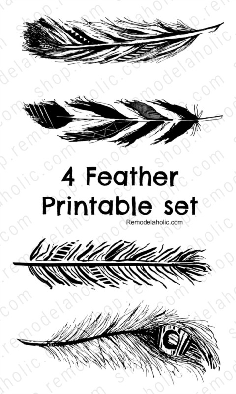 Black Feather Art Printable Hand Drawn Farmhouse Decor, Remodelaholic (1)