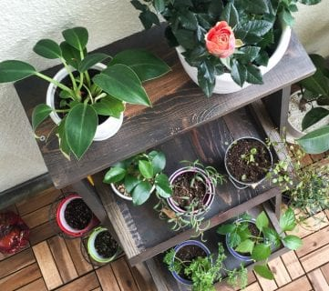 Tutorial: How to Build a Ladder Plant Stand