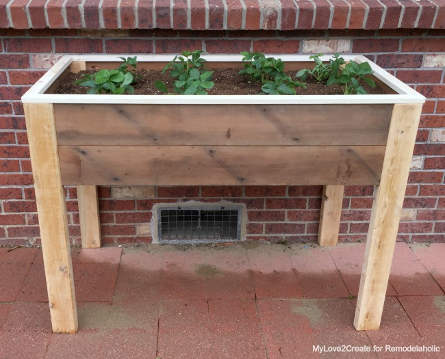 full front of elevated planter box, MyLove2Create for Remodelaholic