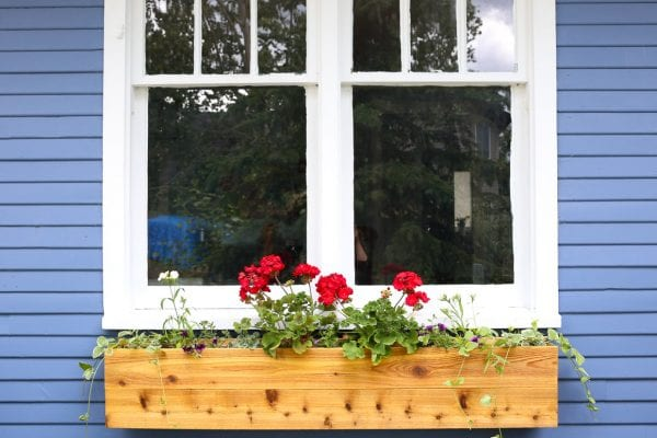 Custom Cottage Window Box, Geraniums-2