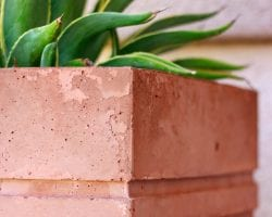 modern-diy-large-stained-concrete-planter-2 feat