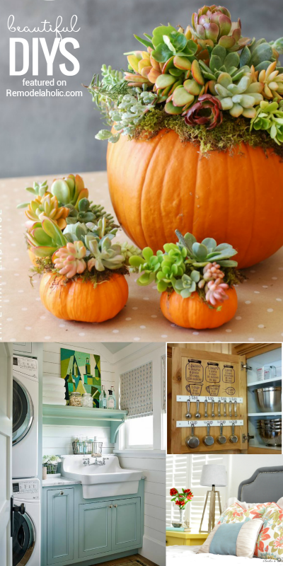 Friday Favorites: pumpkin succulents, beautiful laundry rooms, kitchen conversion charts, and more at Remodelaholic.com