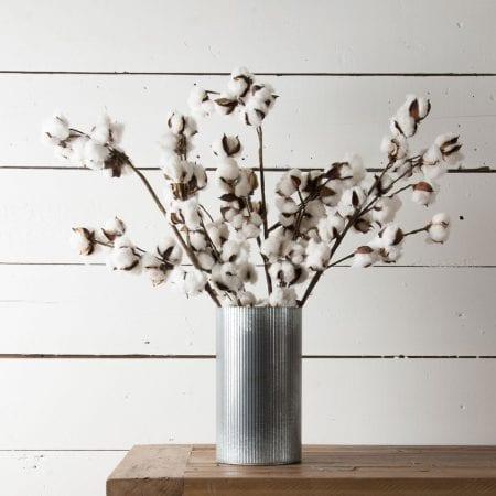 Cotton Stem Magnolia Market DIY