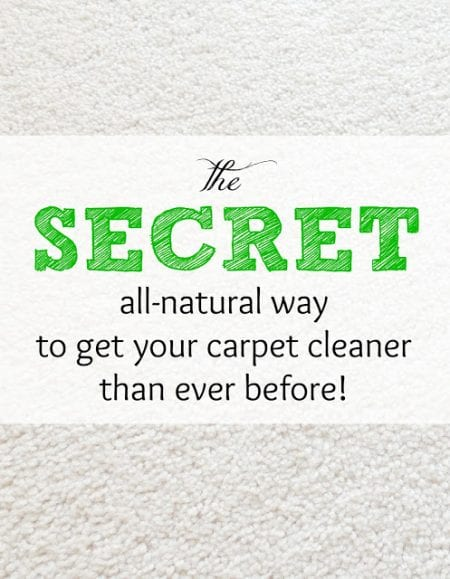 Remodelaholic 45 quick cleaning tips for the holidays - Tips about carpet cleaning ...