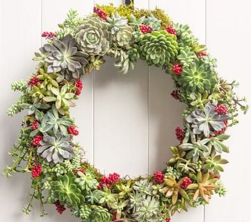 Friday Favorites: Succulent Wreaths and Buffalo Check
