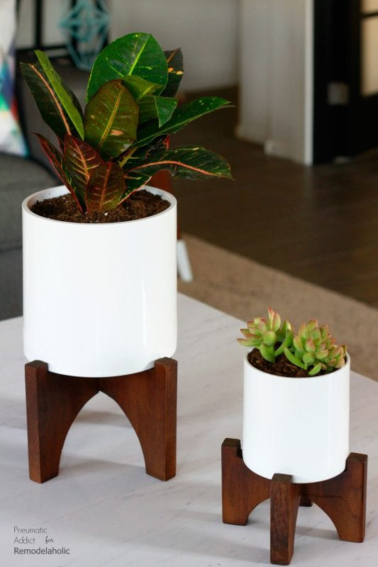 How To Make Modern White Tabletop Planters | Elevate Your House Plants With  These Modern Wood