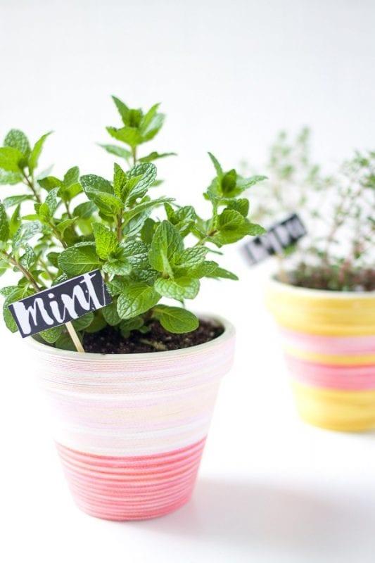 DIY Plant Pots Bash Studio