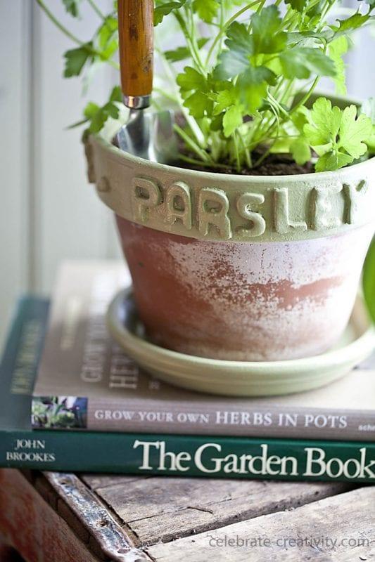 DIY Plant Pots Celebrate Creativity