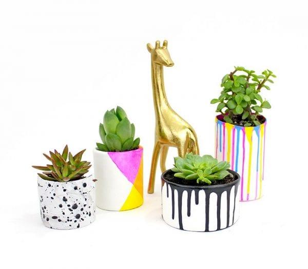 DIY Plant Pots Lines Across