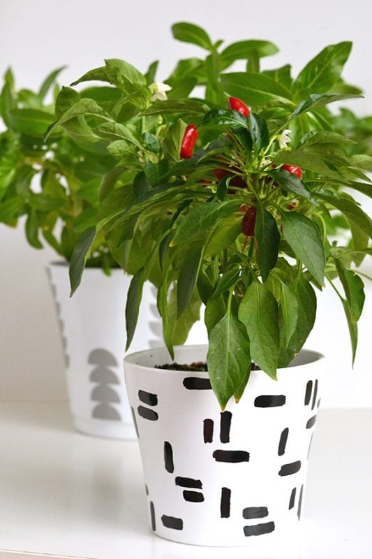 DIY Plant Pots Make And Tell