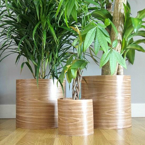 DIY Plant Pots Two Plus Cute