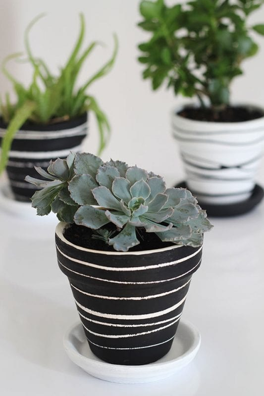 DIY Plant Pots We Can Make Anything