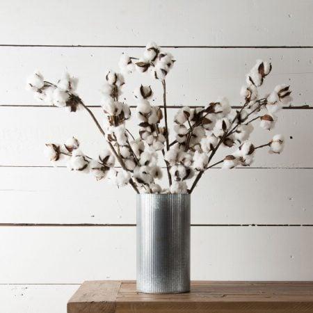 Florals Product Magnolia 1 Of 4 1024x1024 450x450