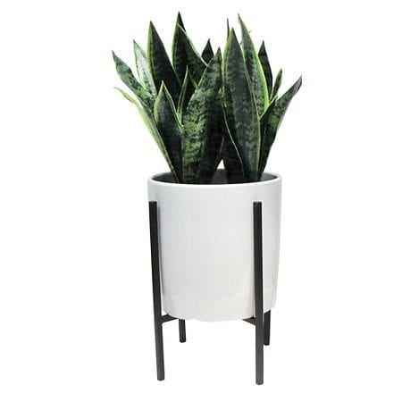 Southwestern Midcentury Planter Stand