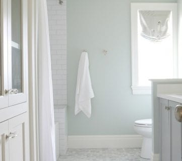 Feat Wall Color Is Sherwin Williams Sea Salt. 2017 Color Trends