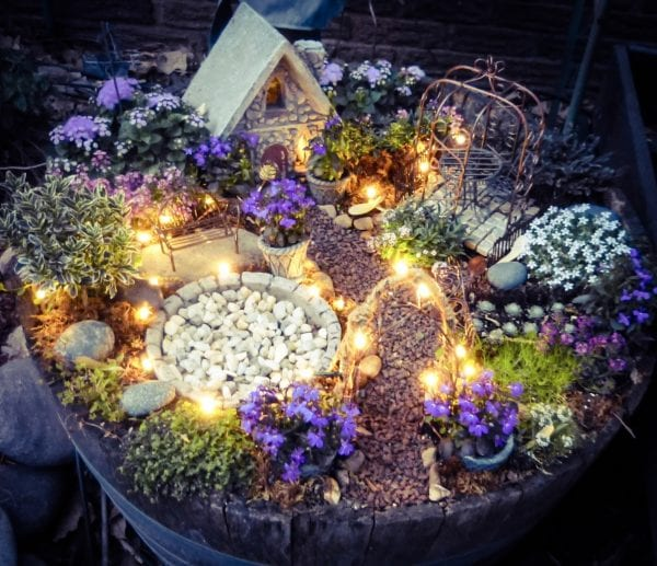 Make A Little Magic Using Solar Wire Led Twinkle Lights In Your Fairy Garden Instructions And Recommended Plants Are Also Included