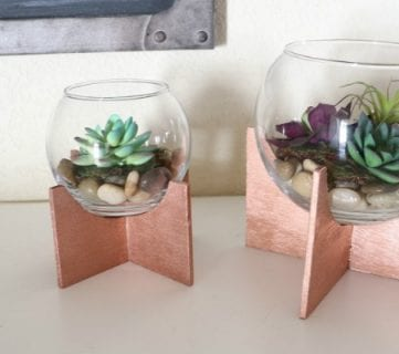 Make Your Own Plywood Cross-Based Globe Terrariums
