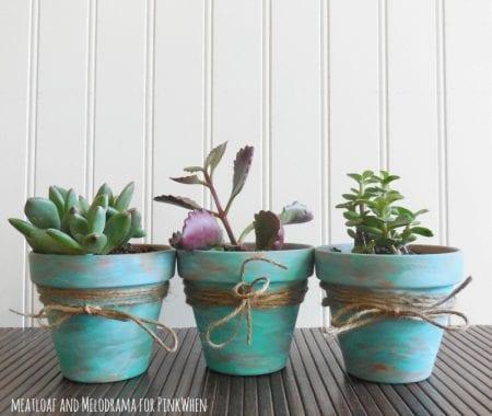 Rustic Succulent Pots 5