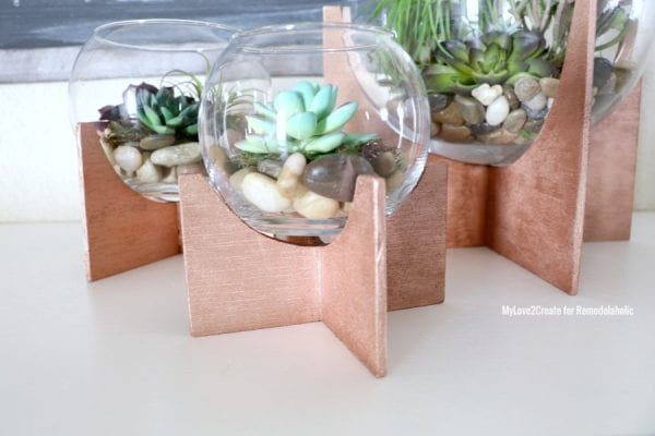 Close Up Of Cross Based Terrariums, MyLove2Create