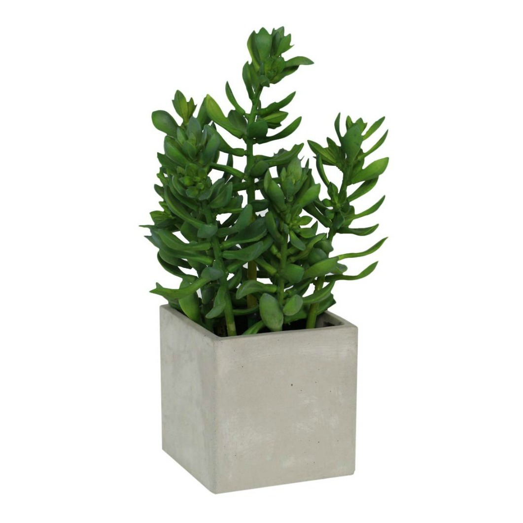 Artificial Floor Plants Ruccus Vine 76cm 100 Floor