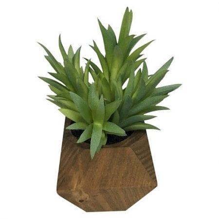 Shabby Chic Mid Century Plant01