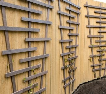 Friday Favorites: Established Sign and Garden Trellises
