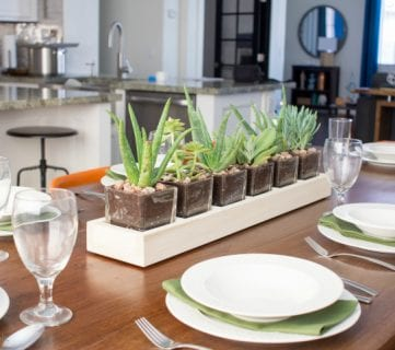 How to Build a Long Wood and Glass Planter Centerpiece