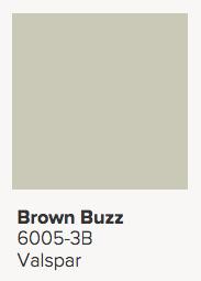 Valspar Brown Buzz