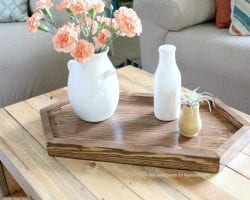Hexagon Tray On Table Close Shot, MyLove2Create