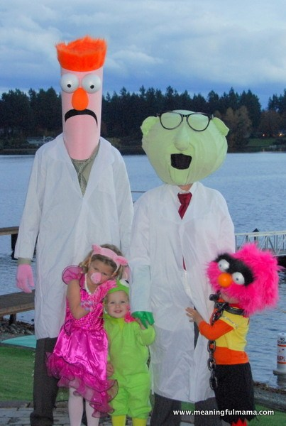 Family Muppets Costumes 1 Meaningful Mama